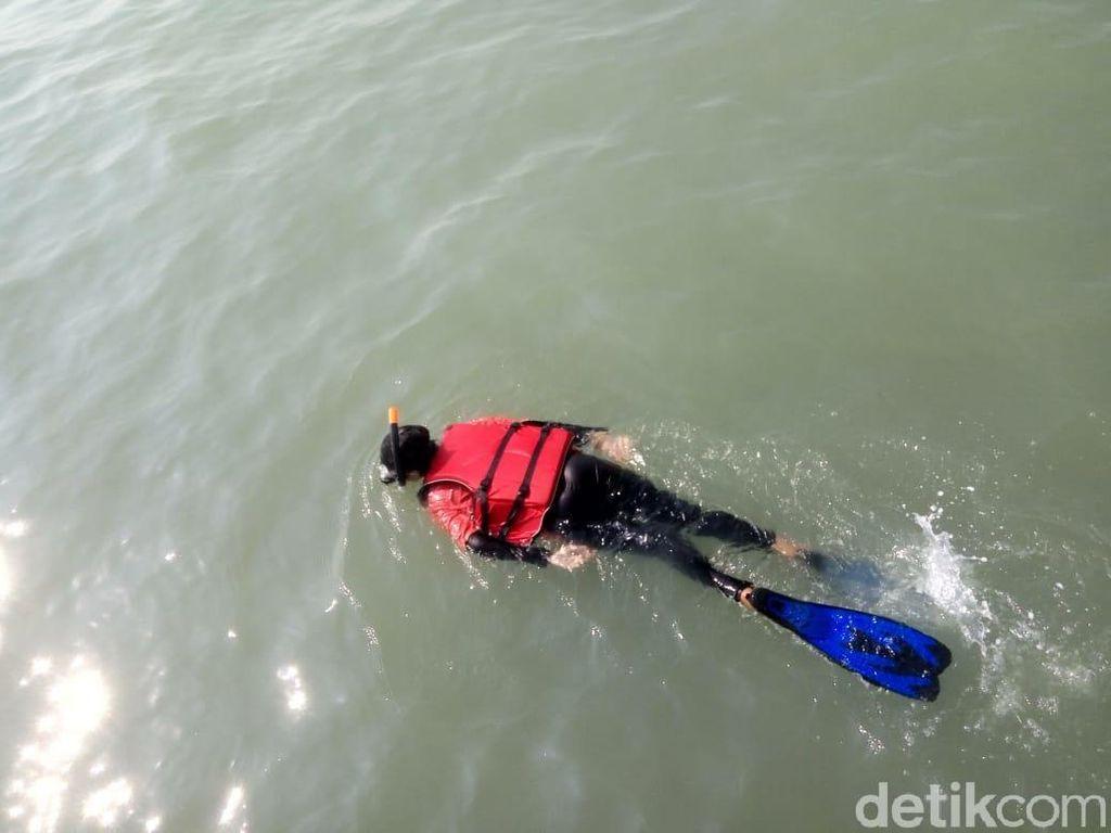 Foto: Mencari Terumbu Karang di Karawang