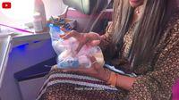 Gila Kebersihan, Repotnya Supermodel Naomi Campbell Saat Mau Naik Pesawat