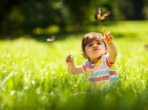Ajak Si Kecil Main di Taman Sambil Nyanyi Lagu Anak 'Kupu-Kupu'