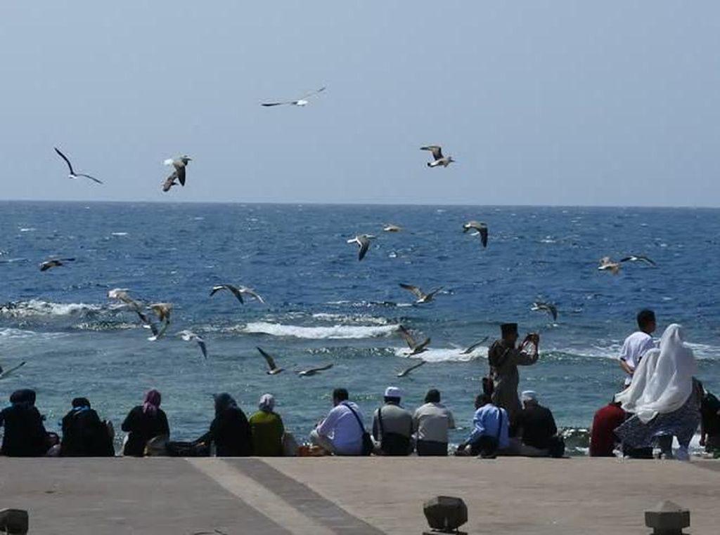 Tak Hanya Haji dan Umroh, Arab Saudi Juga Tawarkan Tempat Wisata