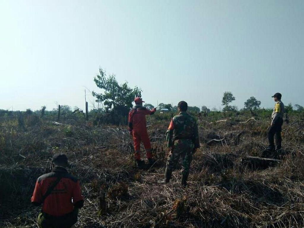 Taman Nasional Tesso Nilo Riau Terbakar, Gajah Liar Dinyatakan Aman