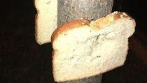 Tren Baru yang Aneh di Inggris, Staples Roti ke Pohon