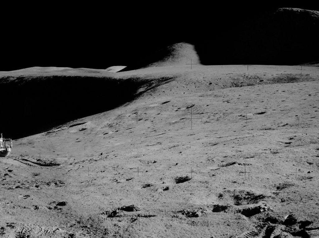 Hewan dari Bumi Ini Diduga Bertahan Hidup di Bulan