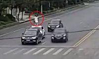 Aksi Viral Istri Nekat Naik ke Atap Mobil di Jalan saat Bertengkar dengan Suami