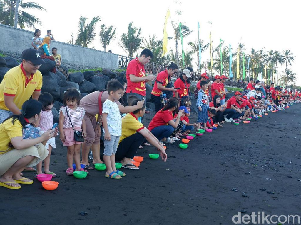 Ritual Fang Sheng, Ribuan Anak Penyu Dilepasliarkan ke Selat Bali