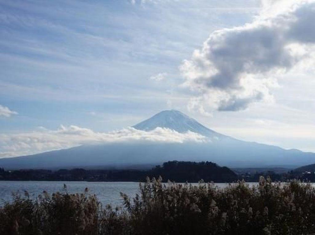 Pendaki Asal Rusia Tewas Tertimpa Batu di Gunung Fuji