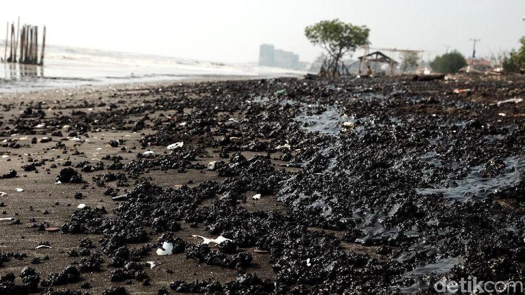 Duh, Tumpahan Minyak Mentah Kotori Pesisir Pantai Karawang