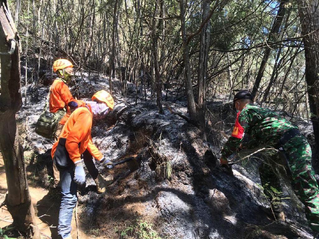 Kebakaran 70 Hektare Gunung Panderman Berhasil Dipadamkan