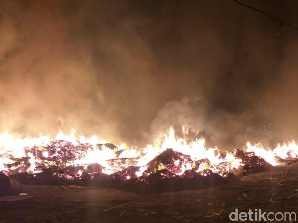 Pabrik Pengolahan Kayu di Probolinggo Terbakar