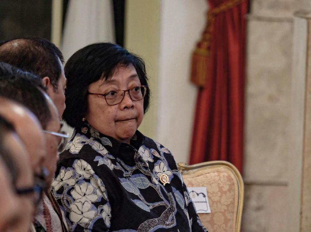 Akan Ajukan PK di Kasus Karhutla, Menteri LHK: Bukan Tak Mau Ikuti Putusan
