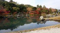 Ini Destinasi Favorit Kalau ke Kota Kyoto Jepang