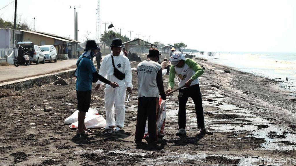 Warga Ramai-ramai Bersihkan Pantai dari Tumpahan Minyak