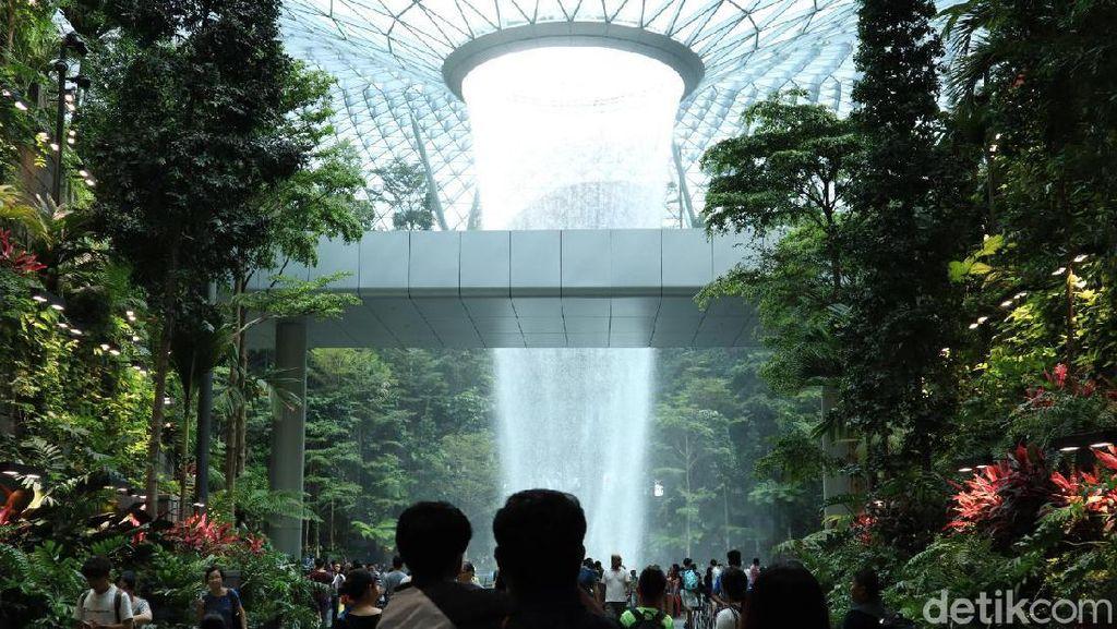 Kerennya Jewel di Bandara Changi: Dari Hutan Sampai Robot