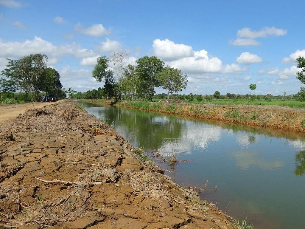 Kementan Akan Benahi Tata Air untuk Tingkatkan Produktivitas Pertanian