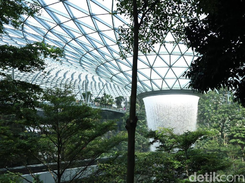 Menakjubkan! Hutan Avatar di Jewel Changi