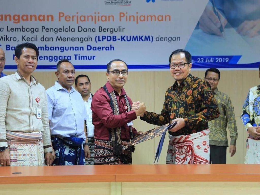 LPDB Kucurkan Dana Bergulir untuk Peternak Sapi di Kupang