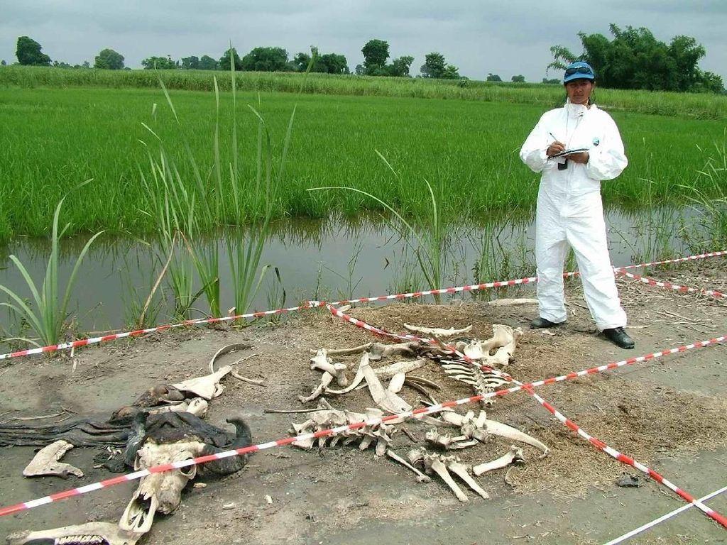 Destinasi Paling Seram di Dunia: Peternakan Mayat