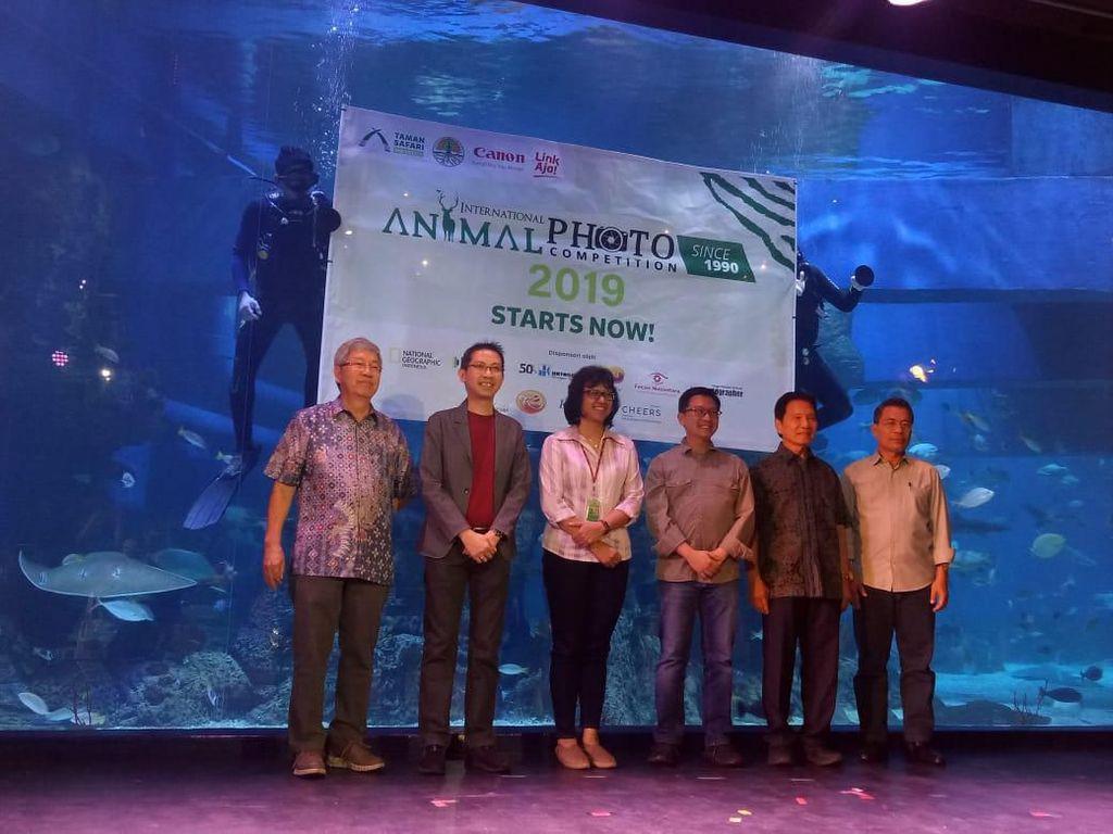 Taman Safari Indonesia Ajak Peduli Satwa Lewat Kontes Foto