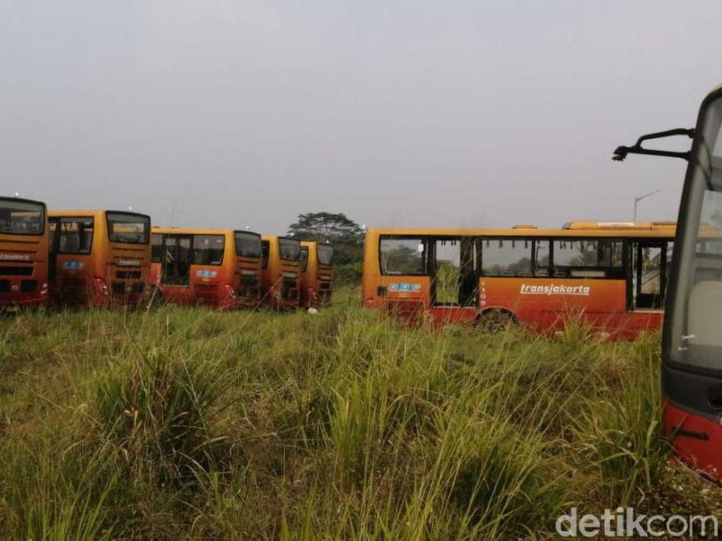Bupati Bogor Ingin Ratusan TransJ Teronggok di Dramaga Jadi Bus Sekolah