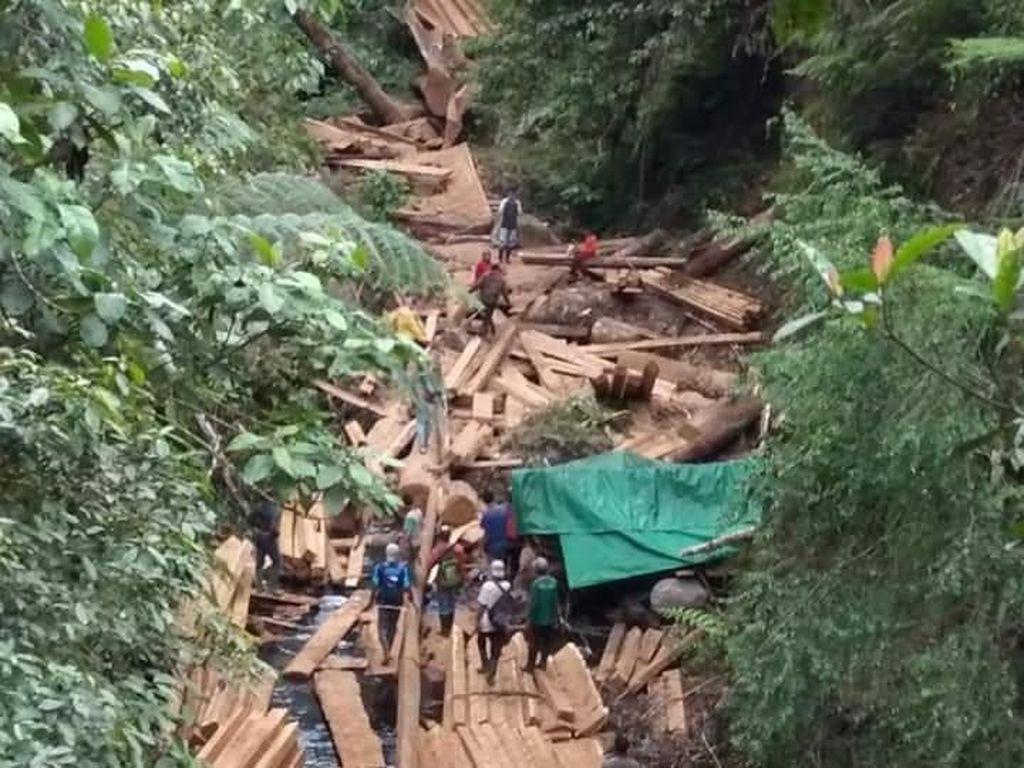 Taman Nasional Gunung Tambora Marak Illegal Logging?