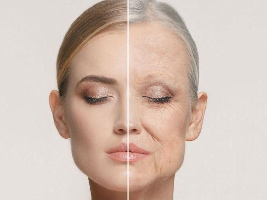 6 Hormon yang Berpengaruh Pada Penuaan Wanita