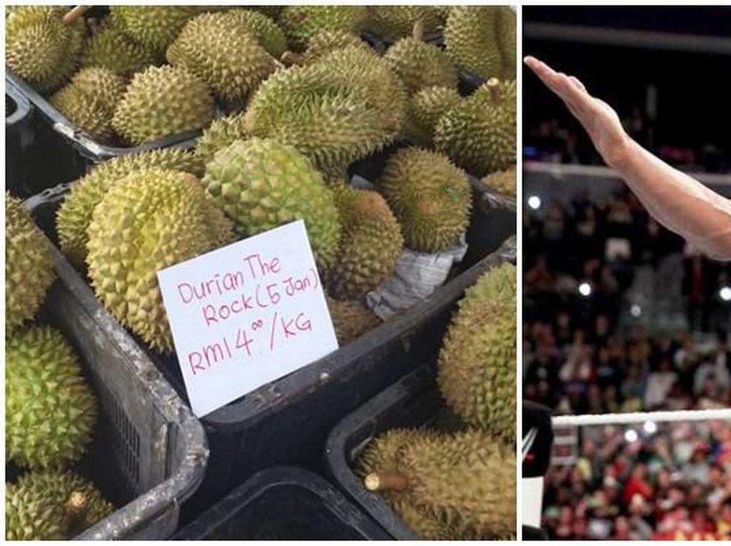 Ini Durian Jumbo Lima Jari Asal Malaysia yang Bernama The Rock