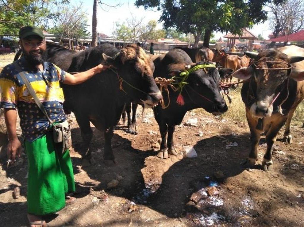 Potret Pasar Sapi Terbesar di Pulau Madura