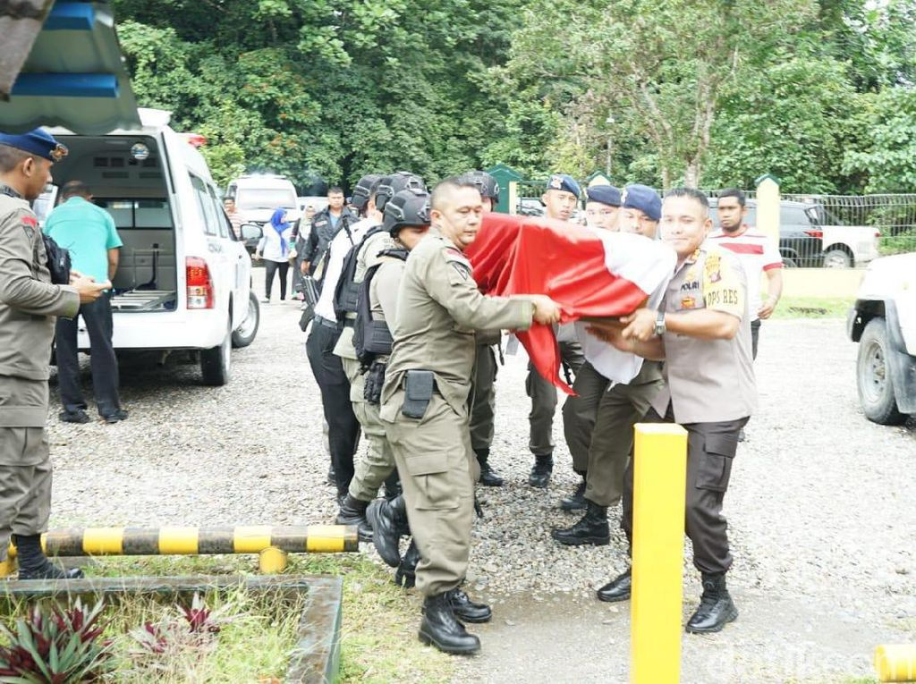 Anggota Brimob Tewas Digigit Ular Death Adder Saat Patroli di Mimika Papua