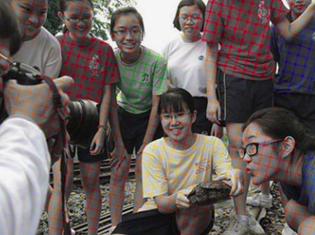 Viral Ilusi Optik Bikin Foto Hitam Putih Tampak Berwarna
