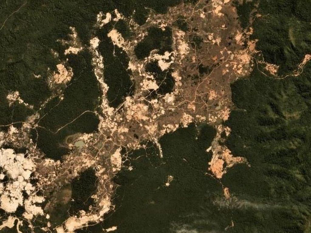 Rusak Parah, Begini Penampakan Hutan Amazon dari Luar Angkasa
