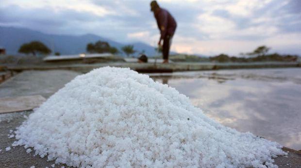 Seorang petani memanen garam di Penggaraman Talise, Palu, Sulawesi Tengah, Senin (29/7/2019). Menurut petani, dalam beberapa pekan terakhir harga garam di tempat tersebut terus mengalami penurunan dari harga rata-rata Rp100 ribu per karung kini menjadi Rp80 ribu per karung untuk garam pupuk dan garam konsumsi turun dari Rp250 ribu per karung menjadi Rp150 ribu per karung. Selain dipicu meningkatnya produksi, masuknya garam dari daerah lain juga turut mempengaruhi harga garam petani di daerah tersebut. ANTARA FOTO/Mohamad Hamzah/aww.