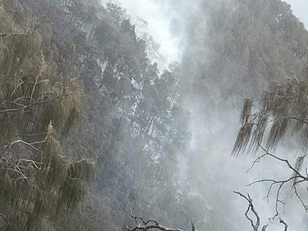 Rawan Kebakaran, Pendakian Gunung Arjuno Ditutup Selama Agustus