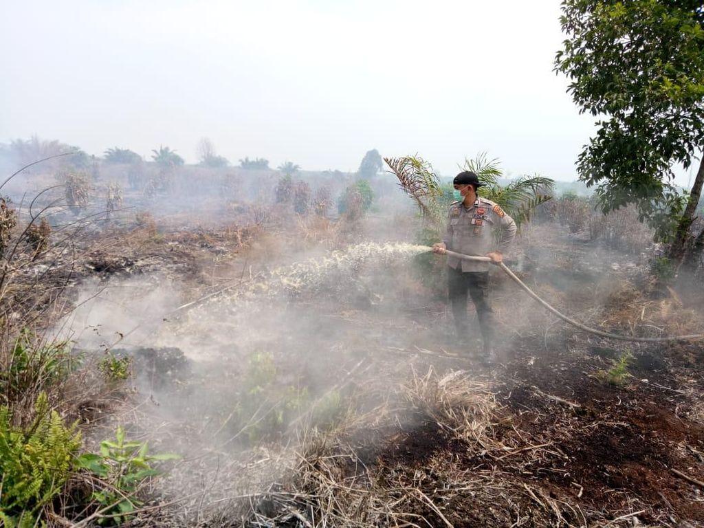 Asap Pekat Kepung Pelalawan Riau