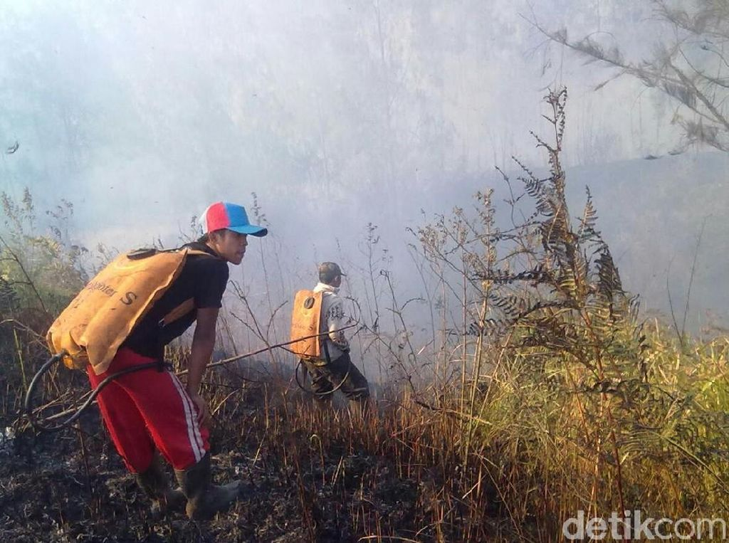 Api yang Membakar Puncak Ijen Sebagian Sudah Padam