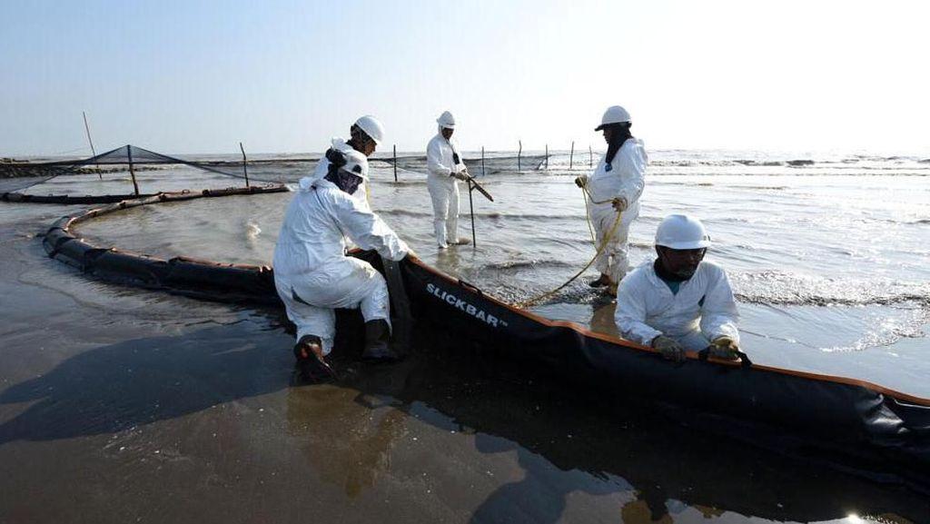Semangat Petugas Bersihkan Tumpahan Minyak di Pantai Sedari