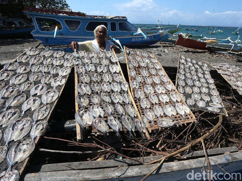 Melihat Emak-emak Tanjung Luar Lombok Mengolah Ikan Kerapu