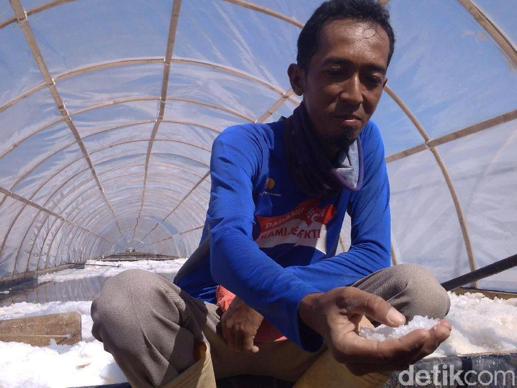 Garam Impor Banjiri RI, Bagaimana Nasib Produksi Lokal?