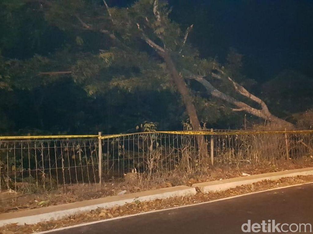Polisi Sebut Jakarta Blackout Akibat Pohon di Bawah SUTET
