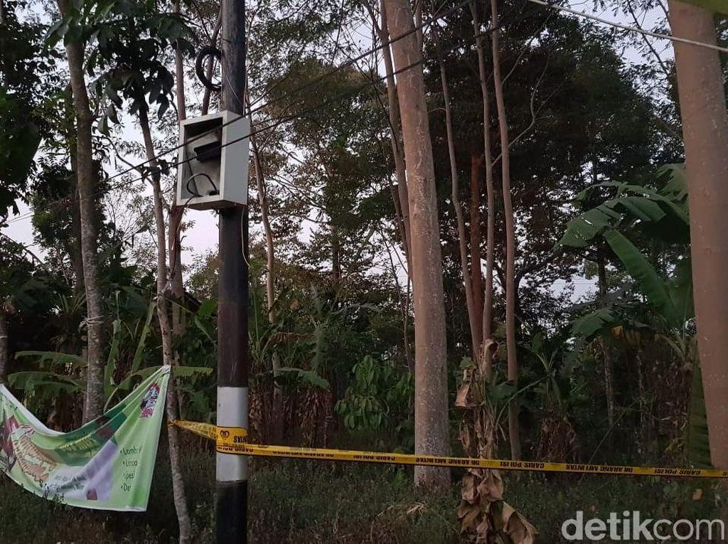 Bukan Sabotase, Blackout Jakarta Akibat Ulah Pepohonan di Semarang