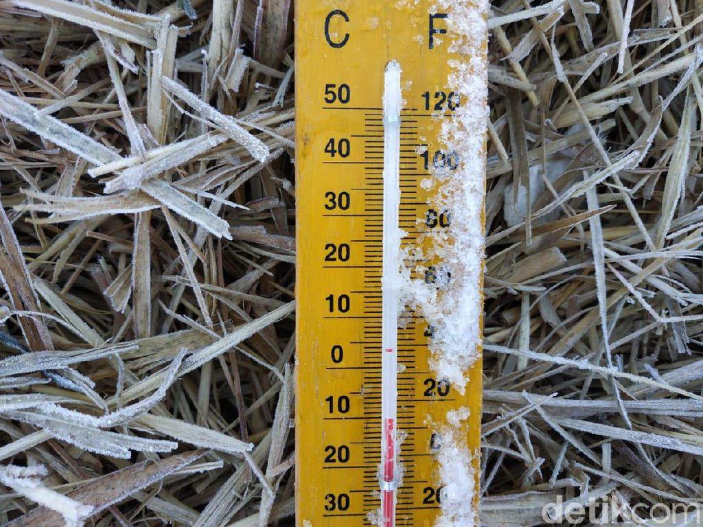 Brrrr! Suhu Dieng Turun Hingga Minus 10,5 Derajat Celcius