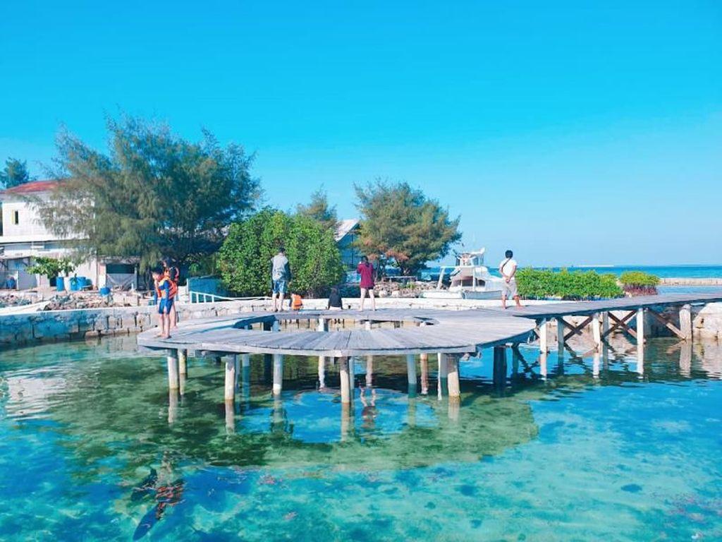 Restoran Terapung di Kepulauan Seribu Ini Punya Penangkaran Hiu