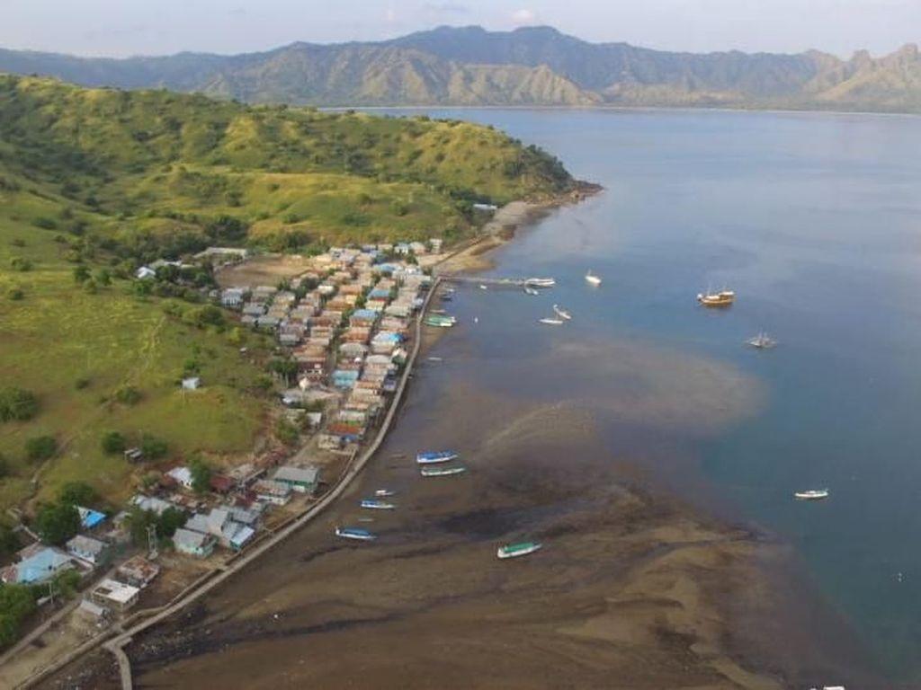 4 Polemik TN Komodo: Penutupan, Tiket Rp 14 Juta-Pembangunan Resor