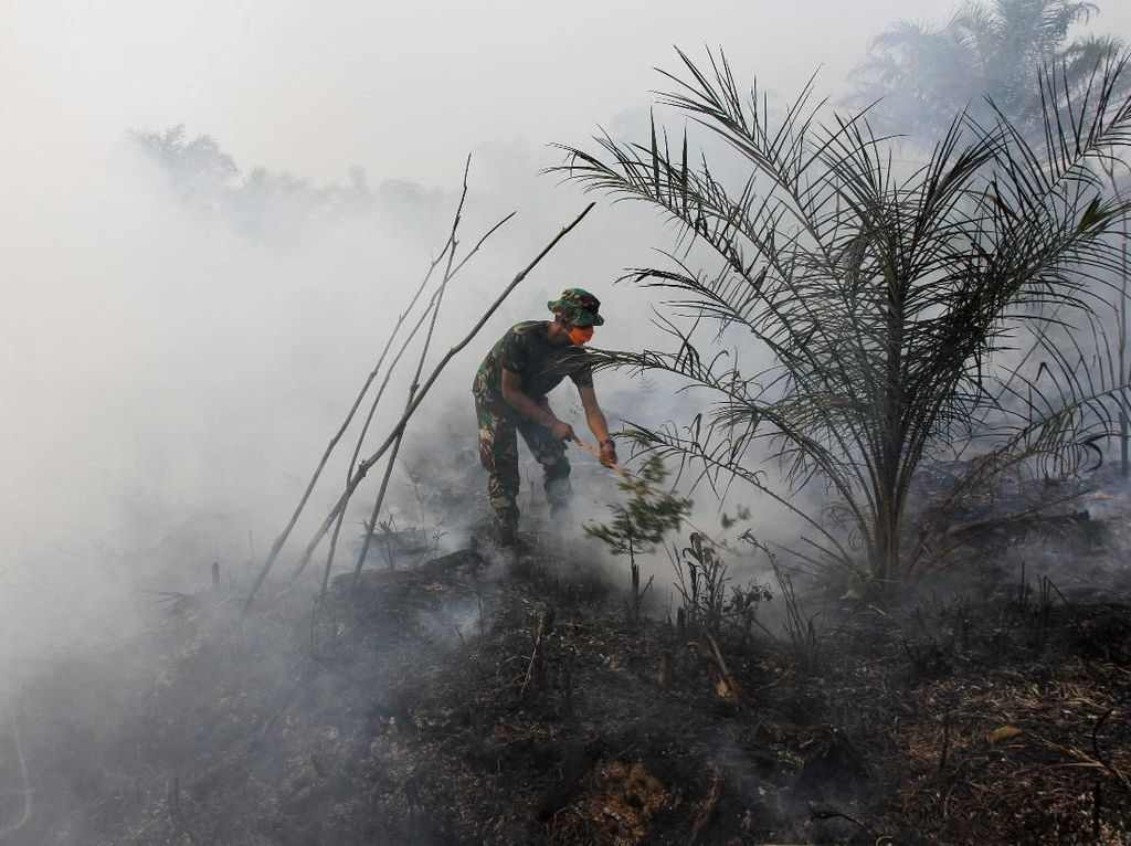 Upaya Pemadaman Karhutla di Aceh Masih Terkendala
