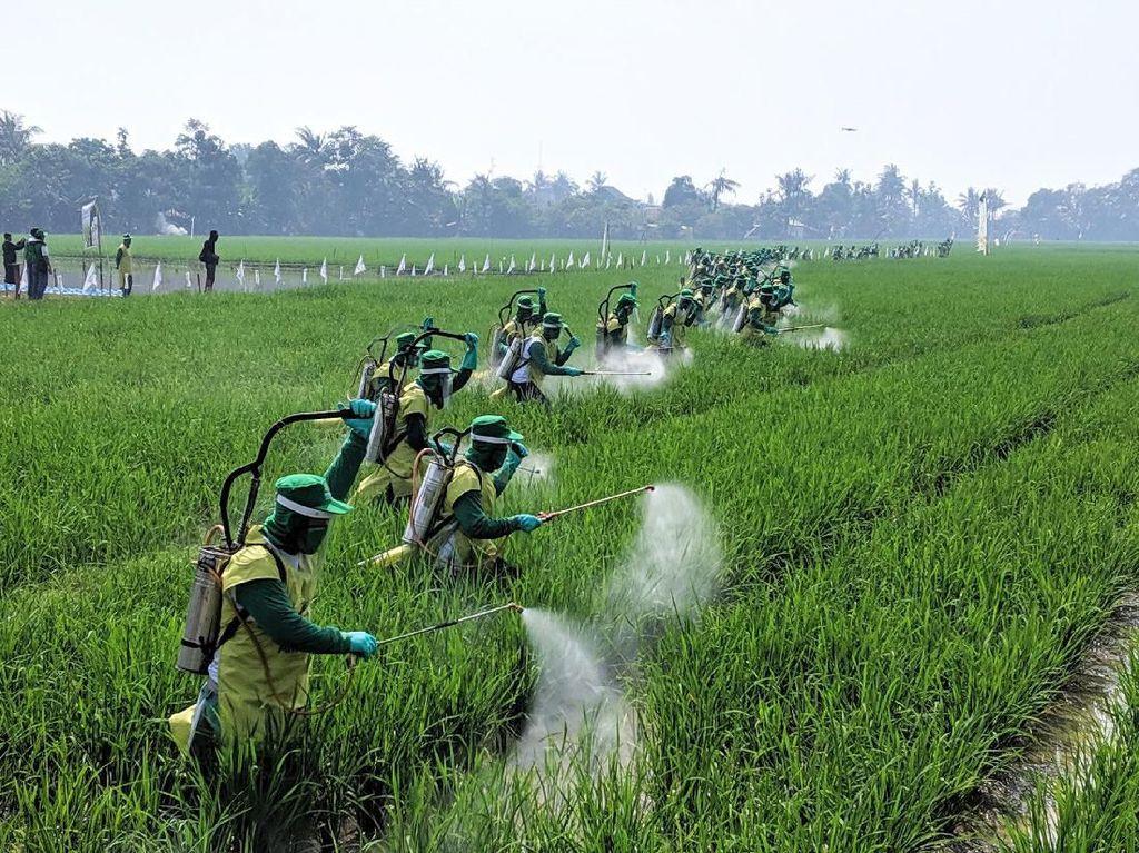 5000 Petani Catatkan Rekor MURI