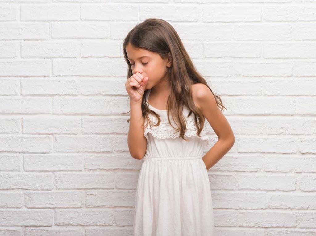 Obat Batuk Kering Alami yang Cocok untuk Anak dan Dewasa