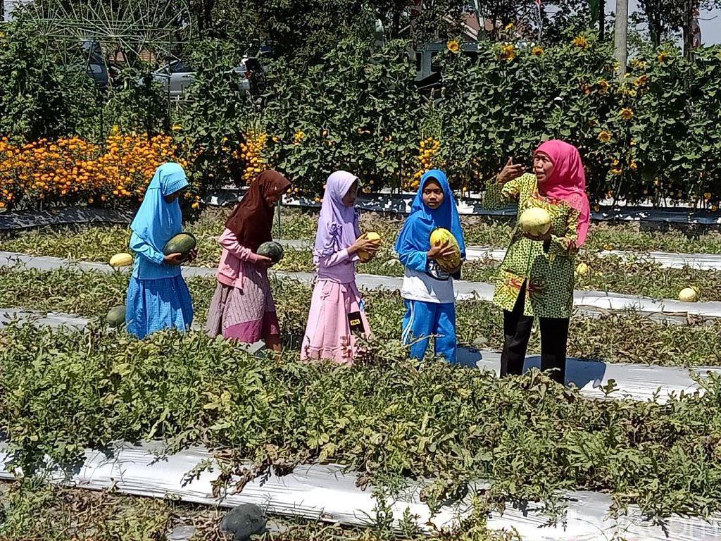 Resmikan Kebun Bunga Dewi Cemara, Khofifah: Inovasi Harus Digalakkan