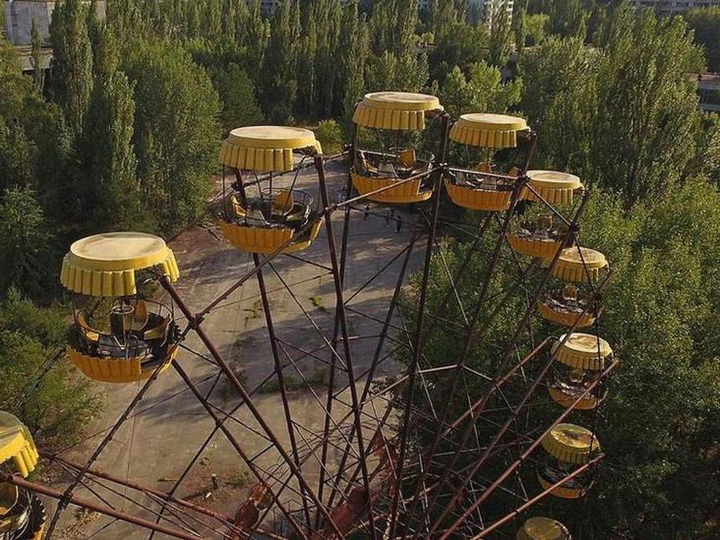 Bencana Chernobyl: Mengapa Tumbuhan Tahan Terhadap Radiasi Nuklir?