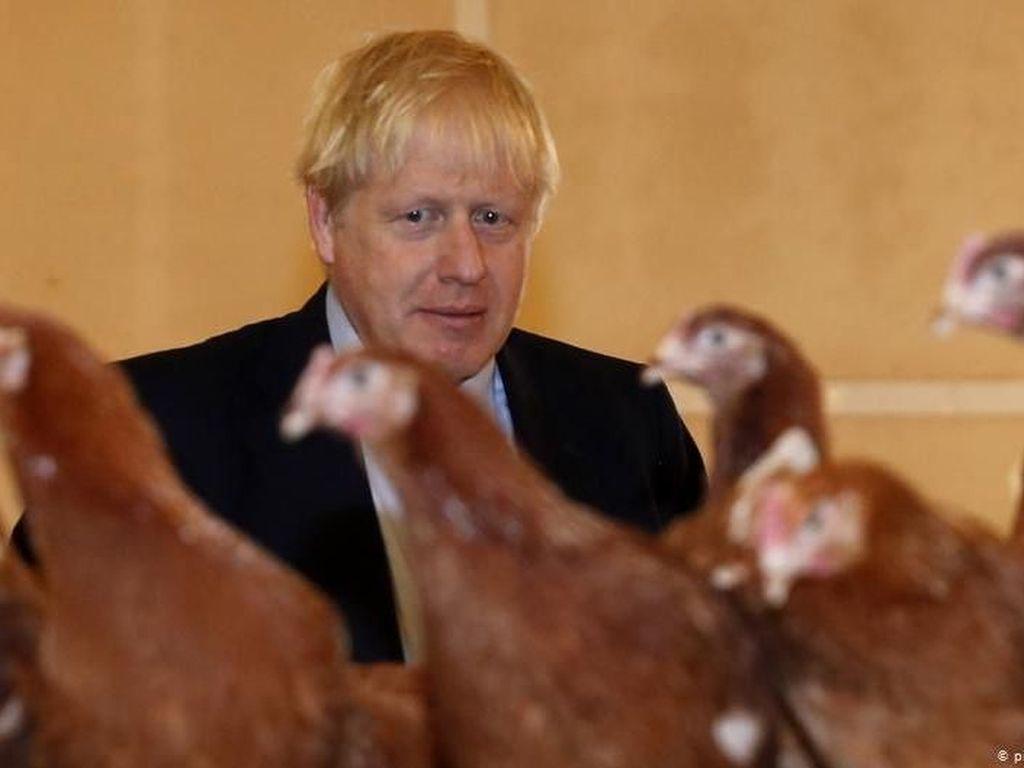Ekonomi Anjlok, PM Inggris Boris Johnson Berharap pada Tenaga Ahli Asing