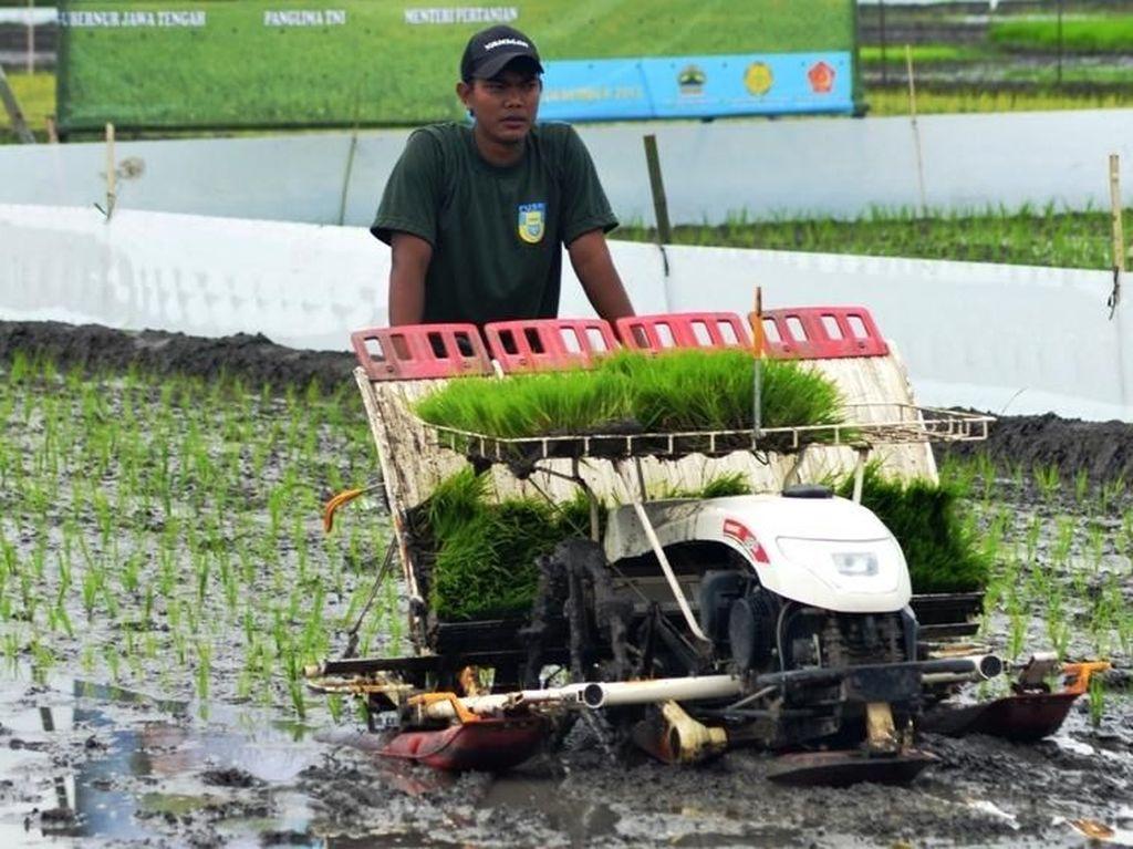 Kementan Sebut Pembangunan Pertanian Berdampak Signifikan ke Petani