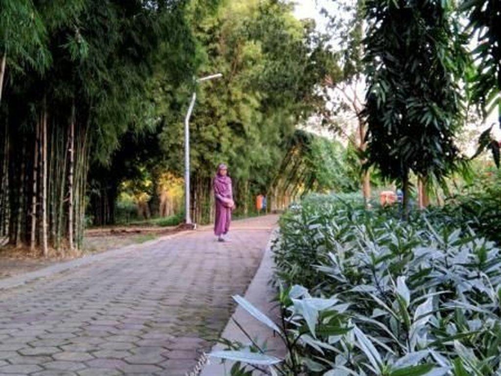 Tempat Buang Sampah Jadi Taman Bunga Indah di Surabaya
